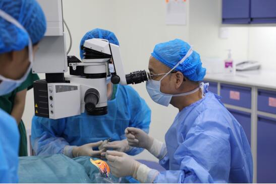全飞秒激光手术后会不会反弹