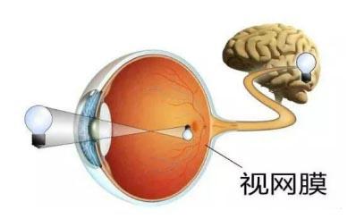 昆明视网膜脱落治疗医院